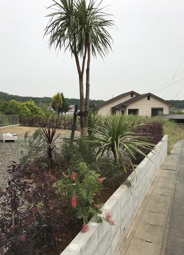 久居の庭_001