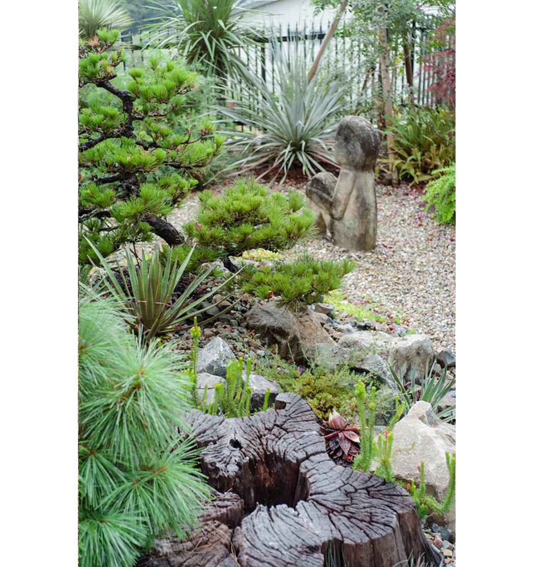 博物花屋マニエラs015